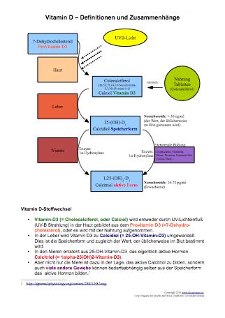 Vitamin D Zusammenhänge und Definitionen.pdf